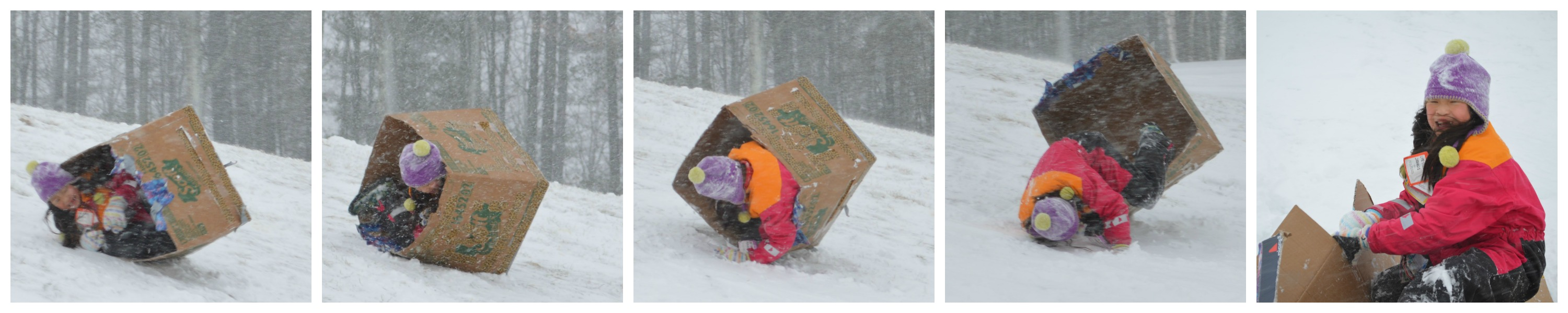 Rolling Rory in snow box